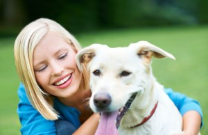 Pet insurance in details