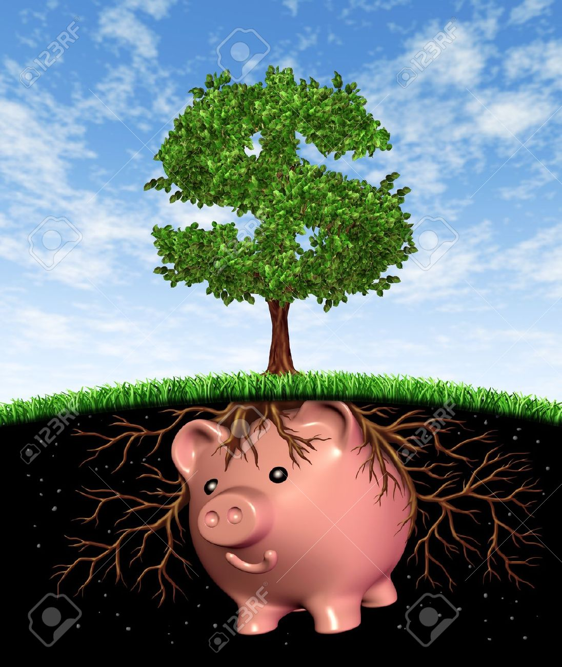 Finance Tree: Why You Should Reevaluate Your Mutual Funds Each Year